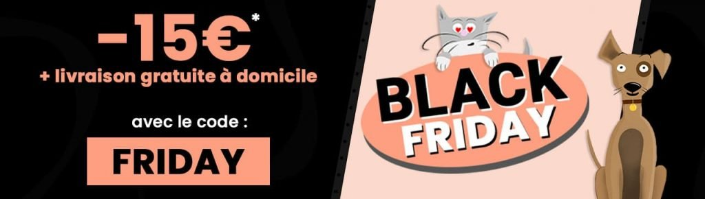 Blackfriday_2020_remise